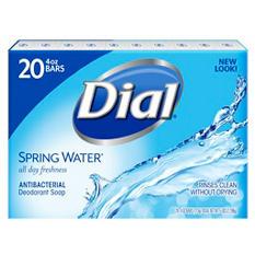 Dial Antibacterial Deodorant Bar Soap, Spring Water (4 oz., 20 ct.)