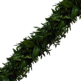 Garland, Italian Ruscus and Salal (Choose 10, 25 or 75 ft.)