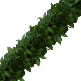 Garland, Israeli Ruscus and Salal (Choose 10, 25 or 75 ft.)
