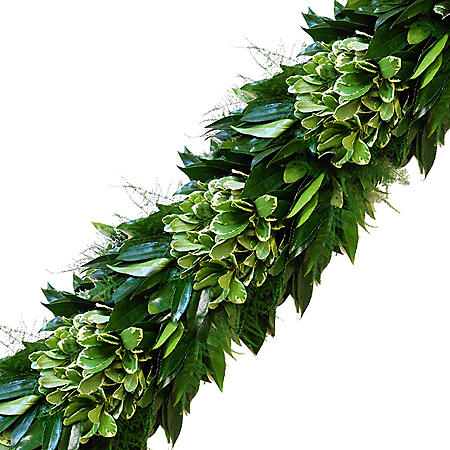 Garland, Cocculus, Variegated Pittosporum and Plumosa (Choose 10, 25 or 75 ft.)