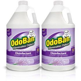 OdoBan Odor Eliminator and Disinfectant Concentrate, Lavender Scent (128 oz., 2 ct.)