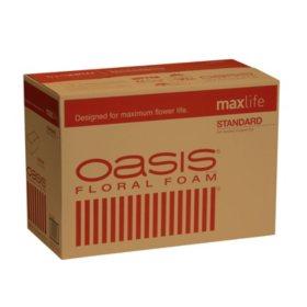 Oasis Standard Floral Foam (48 count)