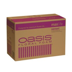 Oasis Instant Floral Foam (48 ct.)