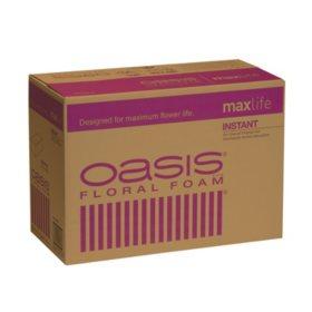 Oasis Instant Floral Foam (48 ct.)