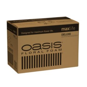 Oasis Deluxe Floral Foam (48 ct.)