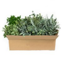 Assorted California Greens (20 Bunches)
