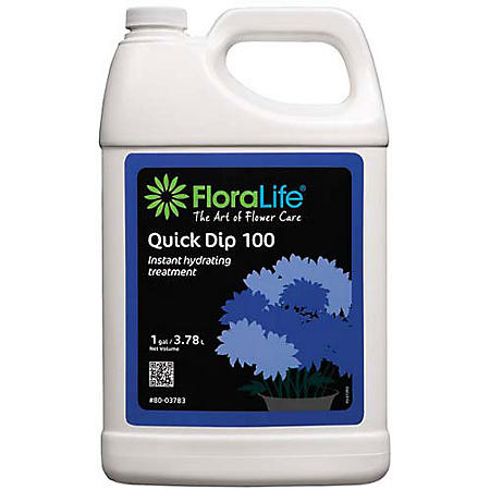 Quick Dip 100 Instant Hydrating Treatment (1 gal.)