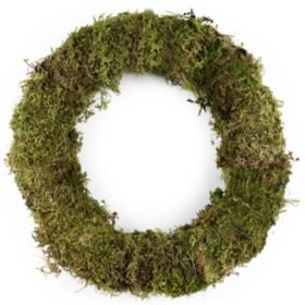 Forest Moss Wreath (20 in.)