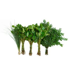 Western Greens Mix (5 bunches)