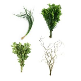 California Fresh Greenery Mix (20 bunches)