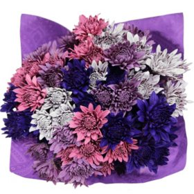 Purple Dazzle Poms (8 bunches)