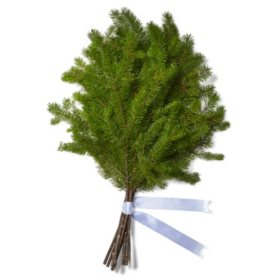 Douglas Fir Bouquet Grade (50 stems)