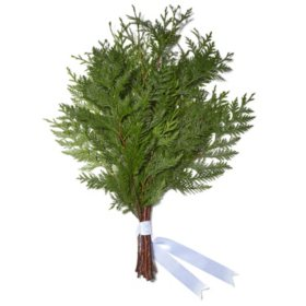Western Red Cedar Bouquet Grade (50 stems)