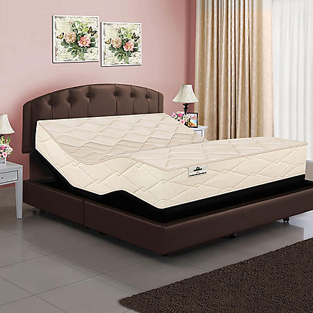 American Sleep Collection Queen Organic Elements 821 Latex Coil Mattress and Adjustable Power Base