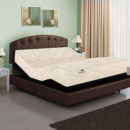 American Sleep Collection Twin XL Organic Elements 801 Latex Coil Mattress and Adjustable Power Base