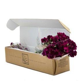 Mini Carnations, Purple (Choose 50, 100 or 150 stems)