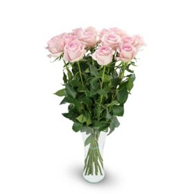 Premium Light Pink Rose Bouquet