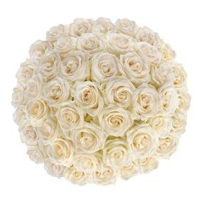 Premium White Roses (choose 50, 100 or 150 stems)