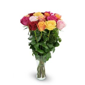 Premium Rainbow Rose Bouquet