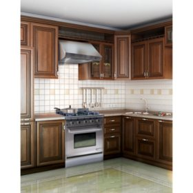 NXR Stainless-Steel Gas Range Hood for NXR Elite Gas Range