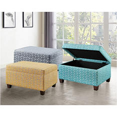 Aniston Storage Ottoman (Assorted Colors)