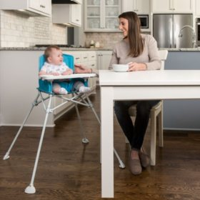 Regalo My Portable High Chair with Feeding Tray (Choose Your Color)