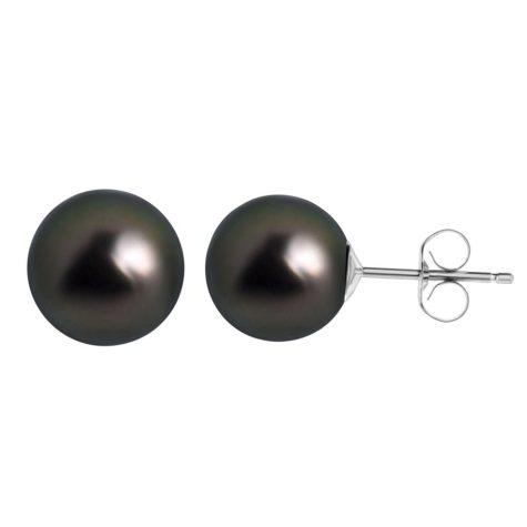9.5MM Tahitian Pearl Earrings in 14 Karat White Gold