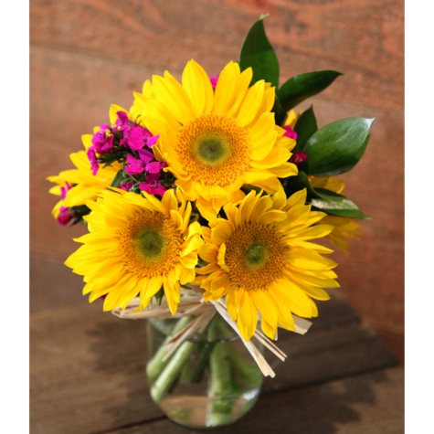 Mini Arrangement, Sunflower Bright Smile (8 arrangements, vases not included)