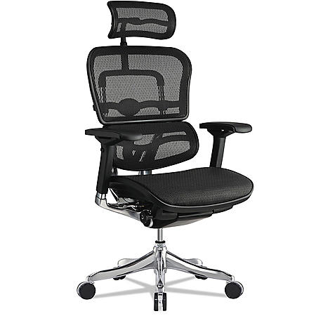 Eurotech Ergohuman Elite High-Back Chair, Black Seat/Black Back