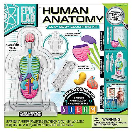 ArtSkills Epic Lab Human Anatomy STEM Clay Body Science Kit
