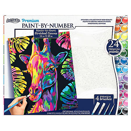 ArtSkills Paint-by-Number (Choose a style)
