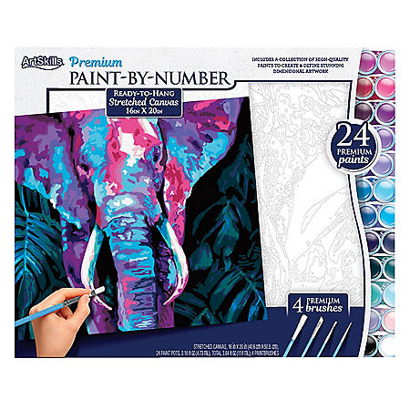 """ArtSkills 16"""" x 20"""" Paint by Number Art Kit, (Choose a style)"""