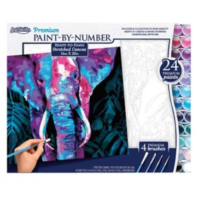 "ArtSkills 16"" x 20"" Paint by Number Art Kit, (Choose a style)"