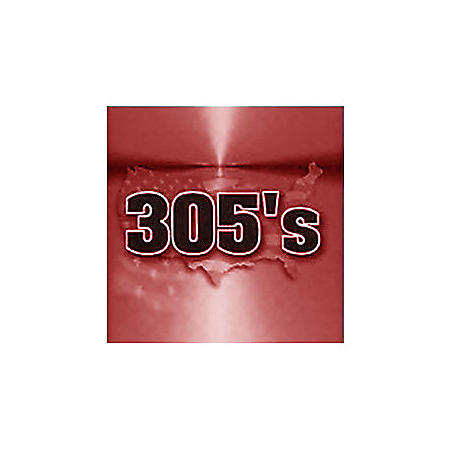 305's Full Flavor 100's Box (20 ct., 10 pk.)