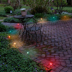 Electric Pathway Multi-Colored Lights - 10 ct.