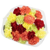 Carnations, Assorted (variety and colors may vary)