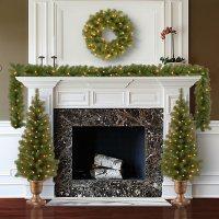 National Tree Company Pre-Lit Evergreen Assortment