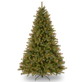 National Tree Company 7.5' Pre-Lit Lakewood Spruce Christmas Tree