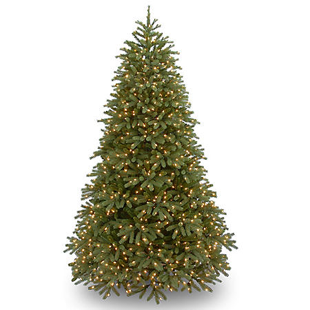 National Tree Company 6.5' Pre-Lit Jersey Frasier Fir Medium Christmas Tree with Dual-Color LED Lights