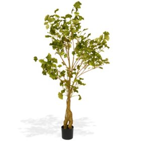 National Tree Company 4.2' Ginkgo Potted Tree