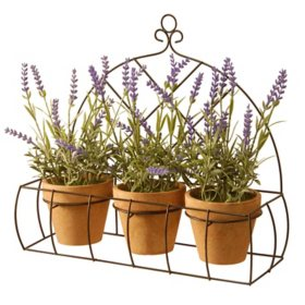 National Tree Company Decorating Lavender with Pot in Metal Holder