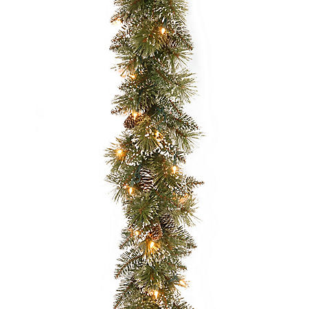 National Tree Company 6' Glittery Bristle Pine Garland