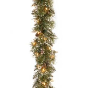National Tree Company 6' Glittery Bristle Pine Garland