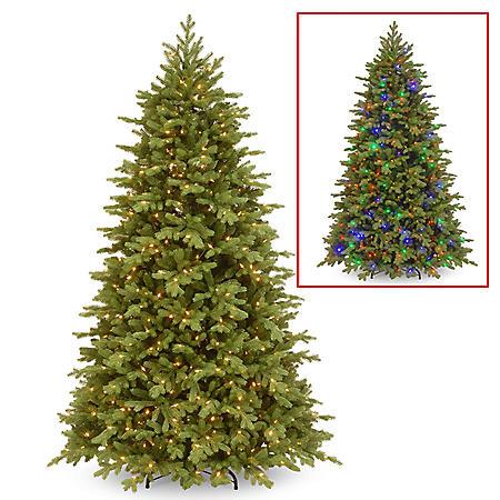 National Tree Company 7.5' Pre-Lit Princeton Fraser Fir Christmas Tree with Dual-Color LED Lights