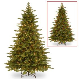 National Tree Company 7.5' Pre-Lit Vienna Fir Christmas Tree with Dual-Color LED Lights