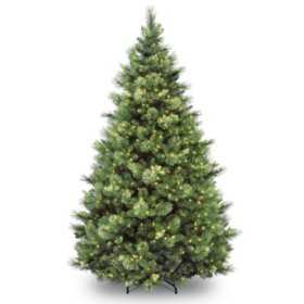 National Tree Company 9' Pre-Lit Carolina Pine Christmas Tree with 900 lights and 2,347 branch tips