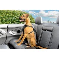 Premier Pet Safety Tether