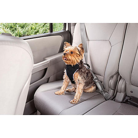Premier Pet Car Safety Harness, Small