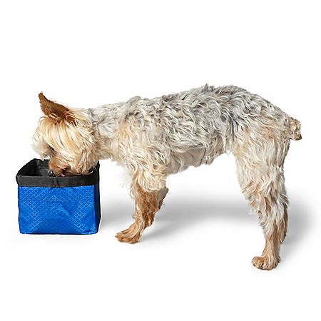 Premier Pet Travel Water or Food Bowl for Dogs or Cats (8 cup capacity)