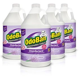 OdoBan Odor Eliminator and Disinfectant Concentrate, Lavender (4 pk.)